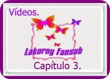 capi3